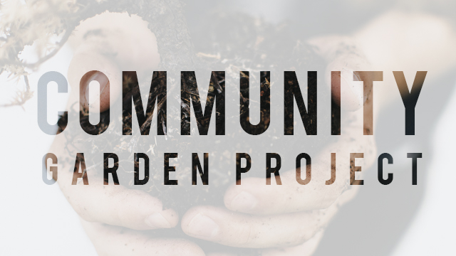 CommunityProject.jpg
